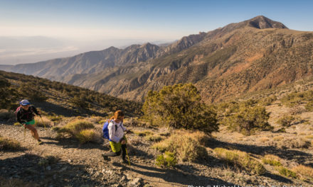 11,000 Feet Over Death Valley: Hiking Telescope Peak